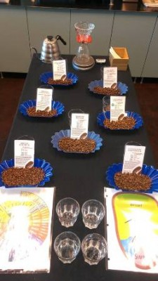 chocolate fish east sac coffee tasting