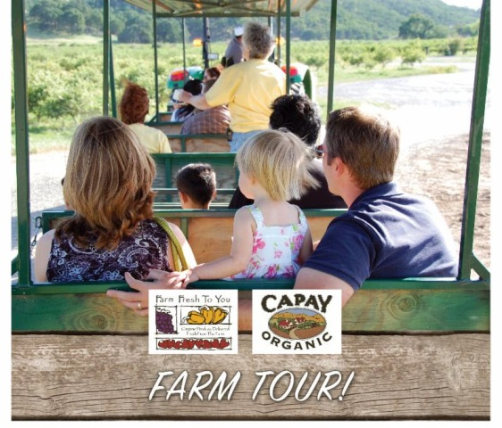 Capay Farm Tour