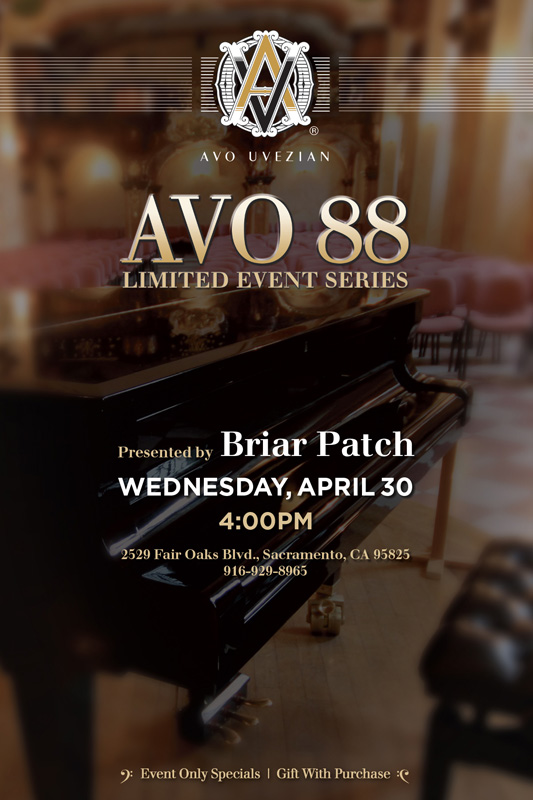 Avo 88 at Briar Patch