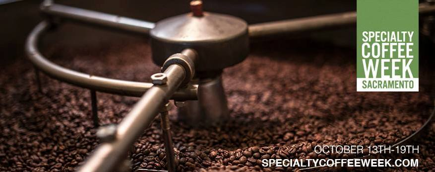 essays on specialty coffee procurement Adjusting procurement strategies for specialty coffee m laura donnet† we present the specialty coffee procurement model and the benchmark case that considers.