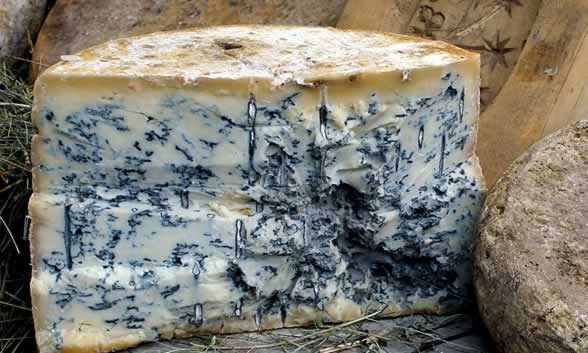 Cheesemaking: Blue Cheese