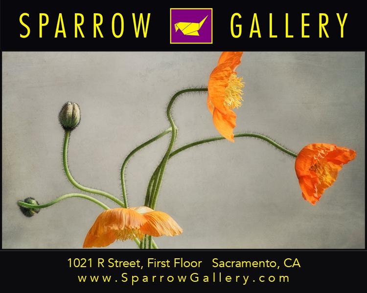 Sparrow Gallery