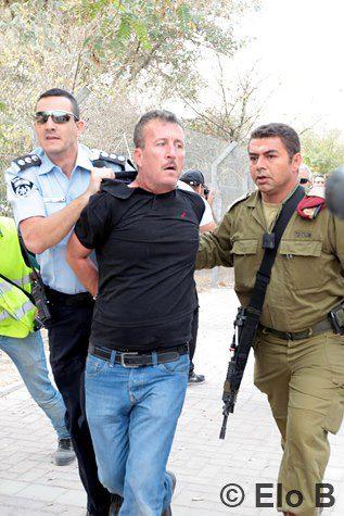 Nonviolent Resistance in Palestine