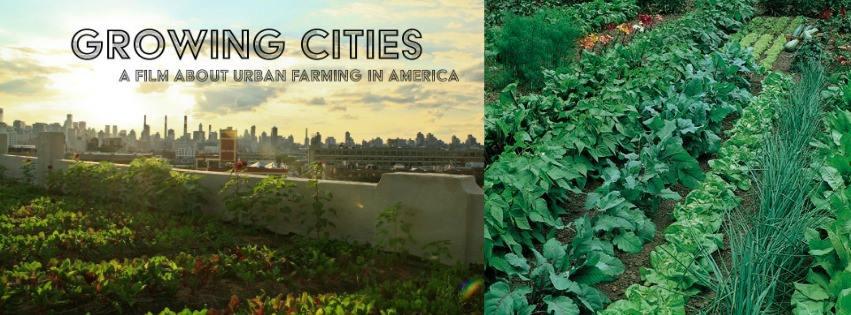 Film Screening: Growing Cities
