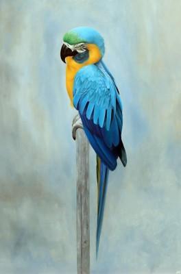 2nd Saturday ArtWalk: Sparrow Gallery