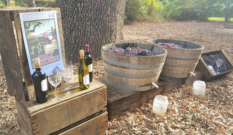 amador county wineries 13