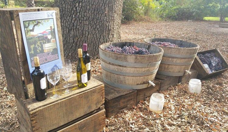 amador county wineries 13
