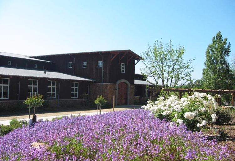 amador county wineries 5