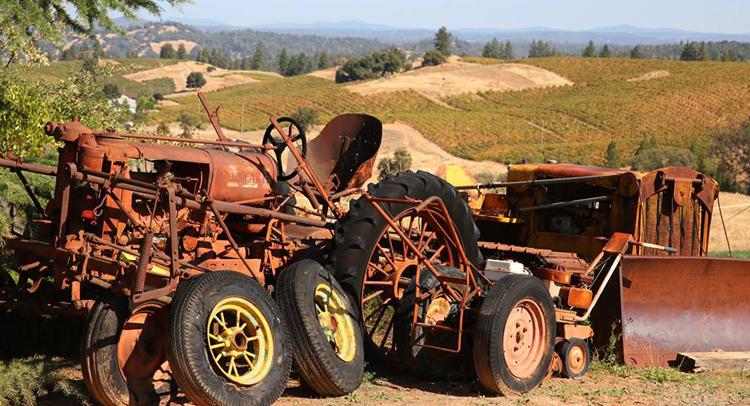 amador county wineries 7