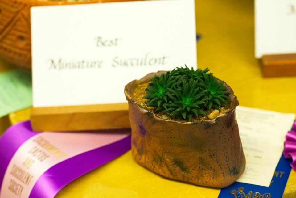 cactus award