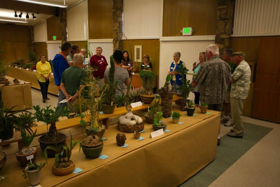 Cactus Succulent Show Sacramento