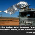 adult summer camp