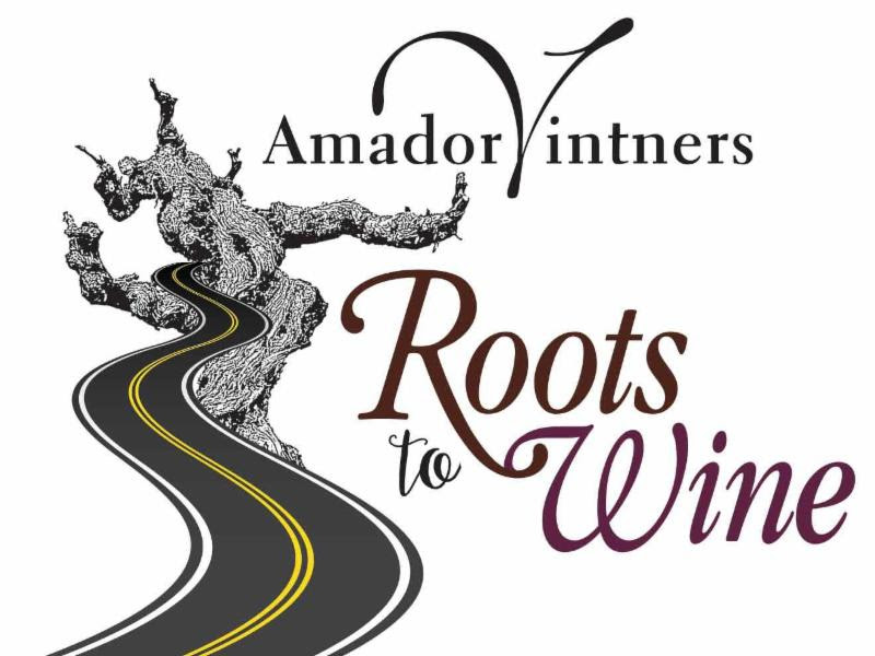 AMADOR: Roots to Wine