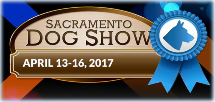 Sacramento Dog Show Sacramento