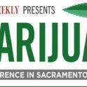 capitol weekly marajuana